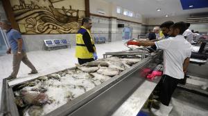قیمت ماهی هم در اصفهان نجومی شد