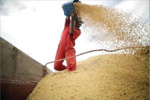 گلایه تولیدکنندگان از رانت و هزینه های اضافه حمل نهاده