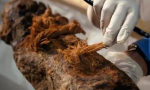 4گوشه دنیا/ مومیایی های مصری قدیمی تر از تصور ما هستند