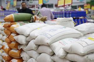 توزیع حدود یک هزار تن برنج تنظیم بازار در زنجان
