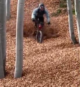 دوچرخه سواری در دریاچه ای از برگ!