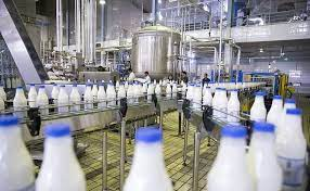 تعطیلی تنها کارخانه شیر ایلام