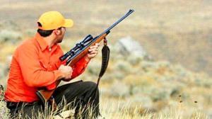 مدیرکل حفاظت محیطزیست اردبیل: هرگونه شکار در استان ممنوع است