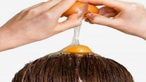 تاثیر زرده، سفیده و تخم مرغ کامل بر مو