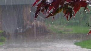 افزایش ۱۸ درصدی بارندگی در گلستان
