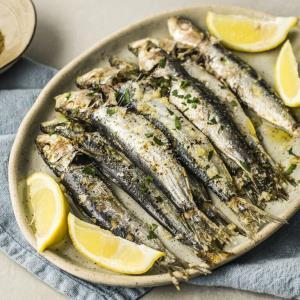 روش تهیه یک نوع «خوراک ماهی» با قیمت مناسب