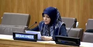 واکنش نماینده ایران در سازمان ملل به انتصاب گزارشگر ویژه برای ایران