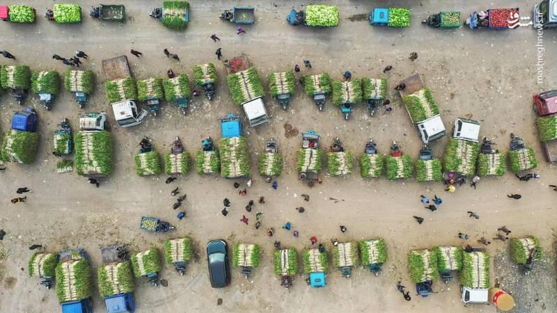 نمای هوایی از بازار پیاز فروشان در چین