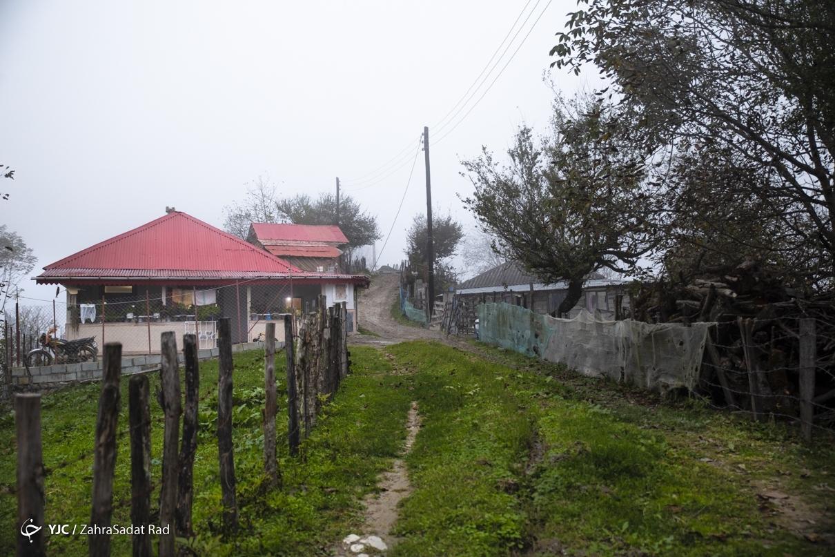 عکس/ روستای بکر شاه میلرزان در گیلان