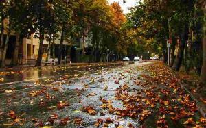 باران پاییزی استان همدان را فرا میگیرد