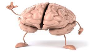 دلایل کاهش اندازه مغز انسان از دیدگاه دانشمندان