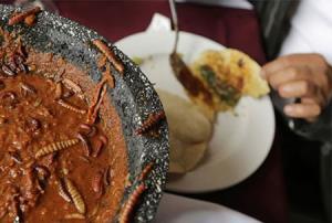 چندشآورترین غذاهای دنیا؛ از سوپ خفاش تا پنیر مگس