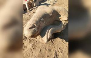 4گوشه دنیا/ کشف مجسمههای تاریخی قوچ در مصر