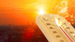 ۲۰۲۰، گرمترین سال ثبت شده در آسیا