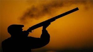 کشف ۹ قبضه سلاح جنگی و شکاری غیرمجاز در ملکشاهی