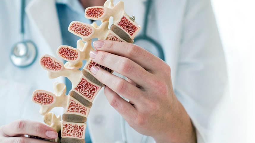 از سلولهایمغز استخوان چه میدانید؟