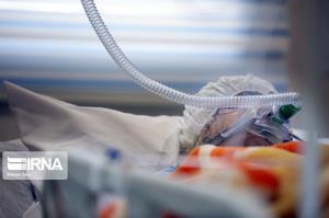 ۳۰۸ بیمار مبتلا به کرونا در منطقه کاشان بستری هستند