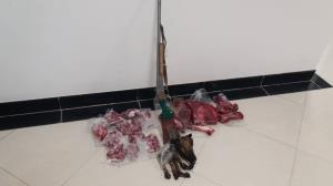 کشف لاشه ۲ رأس قوچ و میش وحشی از شکارچی غیر مجاز در طبس