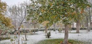 تصاویری از اولین برف پاییزی در اردبیل
