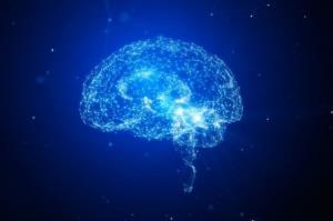 رژیم غذایی حاوی اسیدهای آمینه به پیشگیری از زوال عقل کمک می کند