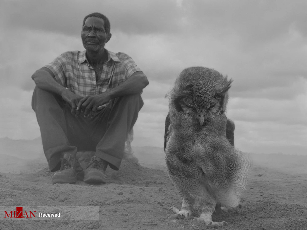 عکس/ پرترههای عجیب از بحران در محیط زیست