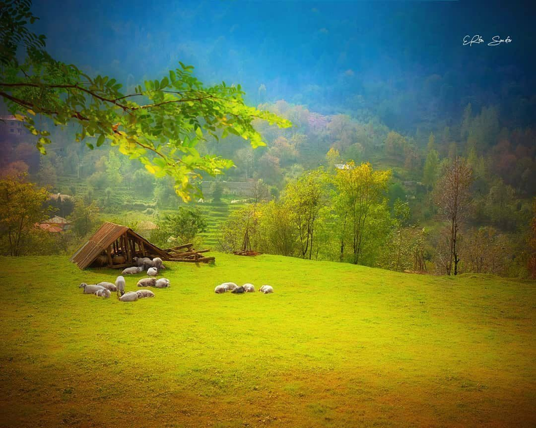 نمایی زیبا از ماسال گیلان