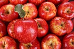 امسال ۷۵ هزار تن سیب از آذربایجانغربی صادر شده است