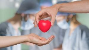 جوان لامردی نجاتبخش زندگی ۴ بیمار