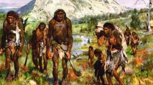گوناگون/ آموزش خیاطی ۱۲۰ هزار سال قبل!