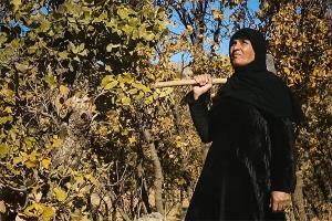 مستندی درباره یک زن ایرانی که سرباز عراقی را با تبر کشت