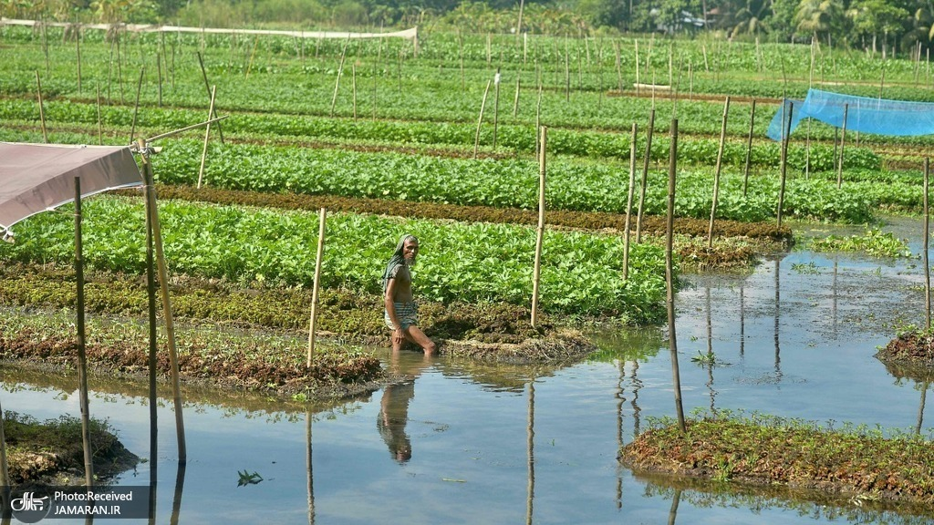 افزایش سطح آب دریاها و سیل شدید در بنگلادش