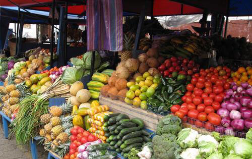 گرانترین میوههای فصل کدامند؟